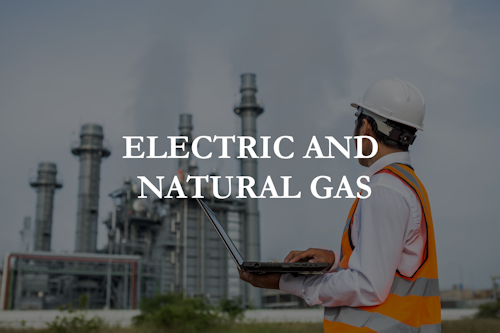 electricand natural gas image